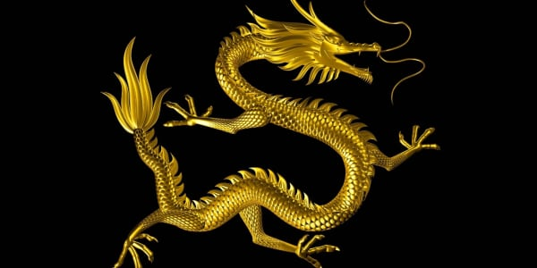 Die Technologie hinter Live Dragon Tiger Spielotheken