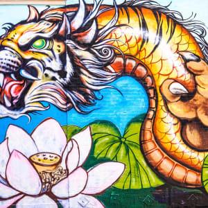 Live Dragon Tiger (Pragmatisches Spiel) Spielbericht