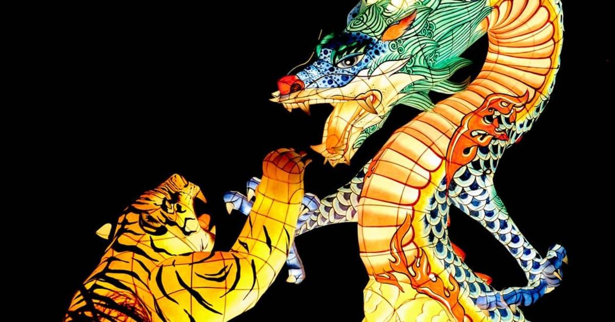 Dragon Tiger: Ein beliebtes Live-Spielothek-Spiel